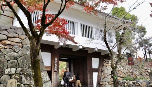 【国宝】紅葉シーズンの犬山城&犬山神社へ行ってきた【愛知の観光地】