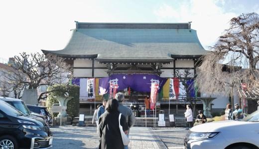 【八王子七福神】美しい御朱印の字に惚れる善龍寺へ行ってきた【東京の寺院】