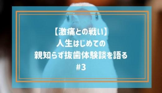 【激痛との戦い】人生はじめての親知らず抜歯体験談を語る#3