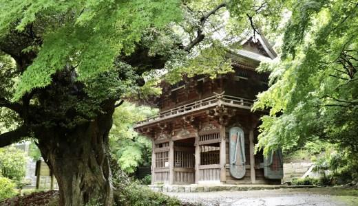 【桜川】青紅葉の季節の椎尾山薬王院へ行ってきた【茨城の寺院】