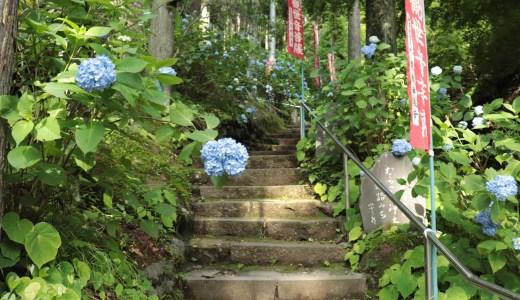 【秩父/小鹿野町】紫陽花が美しい!境内に滝がある観音院へ行ってきた【埼玉の寺院】