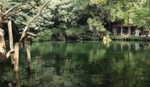 【佐野】日本百名水が湧く出流原弁天池のすぐ近く!涌釜神社へ行ってきた【栃木の神社】