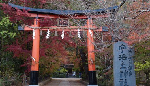 【宇治】宇治上神社へ行ってきた【京都の神社】