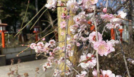 【常総】水海道天満宮へ行ってきた【茨城の神社】