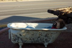 Dead Man in a Tub - outside the BBQ place we inhaled pulled pork at.