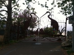 The gates to Rattlesnake Park right by my house.