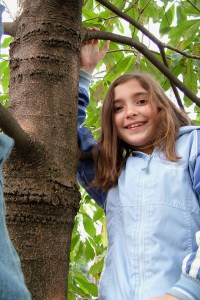 695075_30090012 tree climbinb