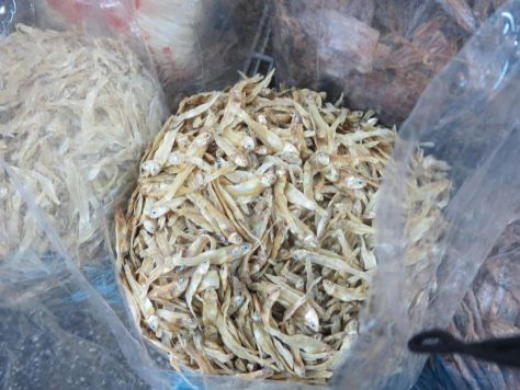 tiny dried fish at the market Thailand 606