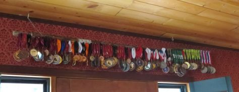 Wine medals won by Hard Row to Hoe