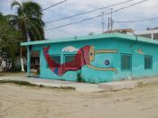 isla-holbox-mexico (9)