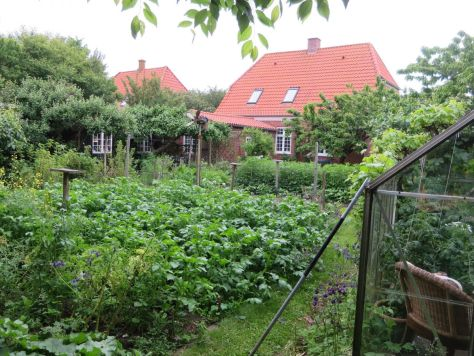 My host parents' beautiful garden on Fanø.