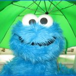 5858 Cookie Monster