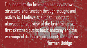 imagescaowaggc - Finding Optimism and Positive Moods : The Neuroscience. Part 1.