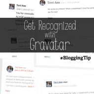 What is Gravatar? Blog Commenting Tip