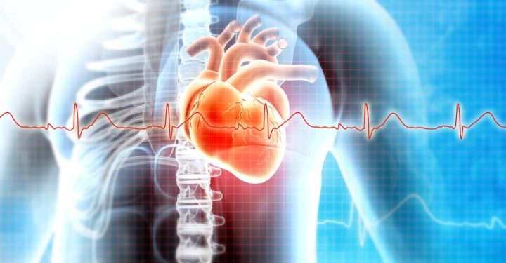 According to the CDC, a total of 475 cases of myocarditis or pericarditis were recorded in patients 30 and younger.