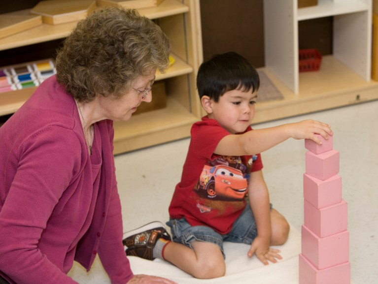 Understanding Montessori: The Teacher