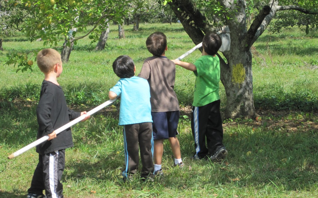 Build Your Child's Vocabulary: 3 Activities for Fall