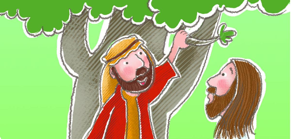 Image result for zacchaeus