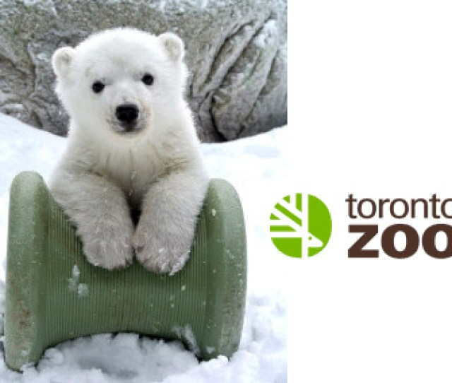 Hop On Over To The Toronto Zoo This Easter Weekend For Some Egg Straordinary Family Fun Bring Your Camera And Have Your Photo Taken With The Easter Bunny