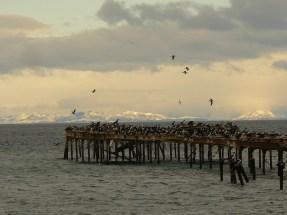 Estrecho Magallanes