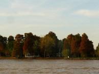 Delta del río Paraná