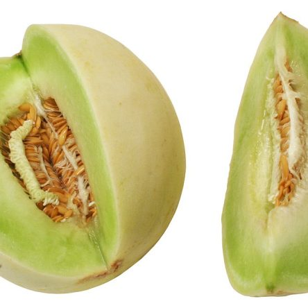 Melon Tuna