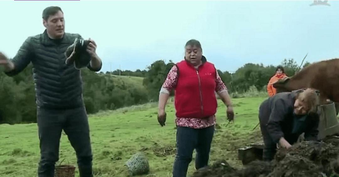 Pancho Saavedra saca RISAS de los televidentes al LANZARSE a MONTAÑA DE CACA
