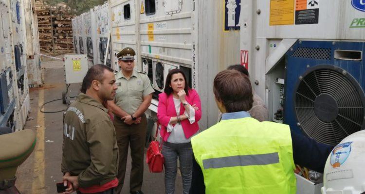 Interceptan millonario cargamento de cocaína oculto en container que llegó al Puerto Coronel