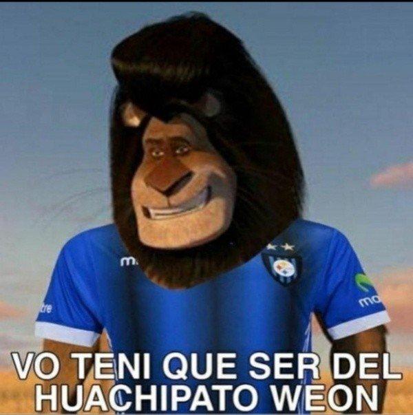 huachipato-meme.jpeg_1546443756