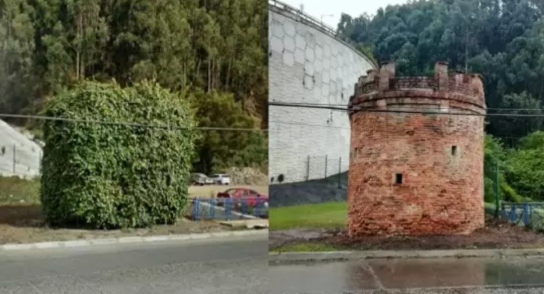 Descubren ENIGMATICA TORRE tras PODAR estructura en TALCAHUANO