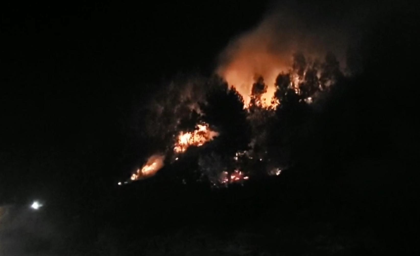 Fuegos Artificiales provocan INCENDIO FORESTAL en Lebu