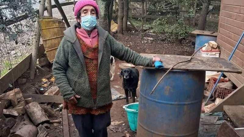 Encuentran MUERTA a anciana abandonada en Osorno que vivía con 14 perros, ya hay UN DETENIDO