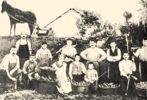 Bolgárkertész munkaközösség