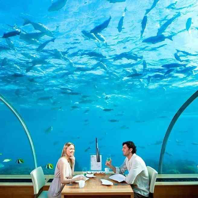 Ithaa Undersea2