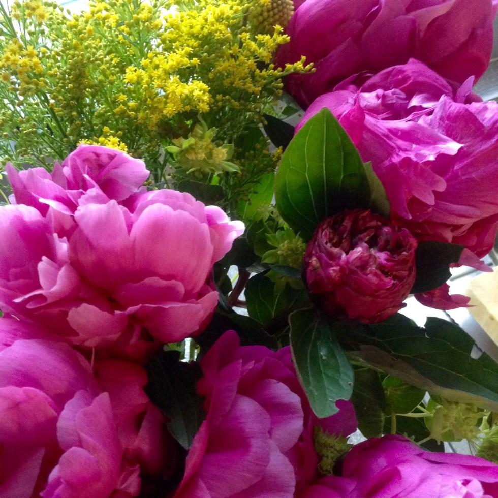 Bloom & wild eloise