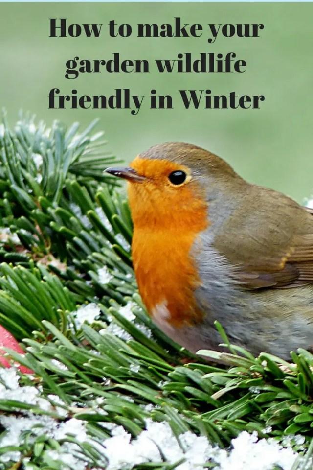#winter #gardening #wildlife
