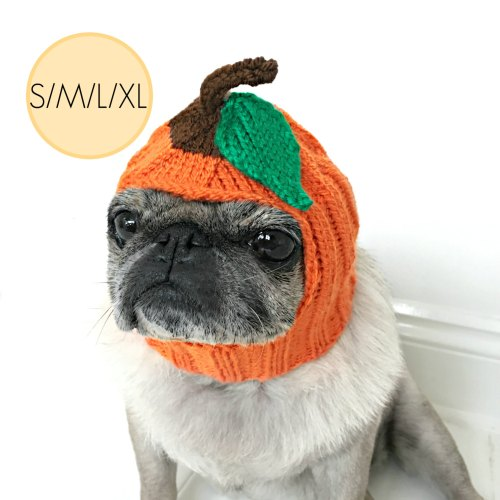 Pumpkin Halloween Dog Costume