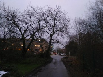 Im Neuenheimer Feld unmittelbar vor dem Technologiepark.