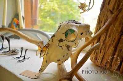 Decorative Skulls 010