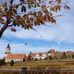 【山梨】紅葉の見頃な、秋のハイジの村