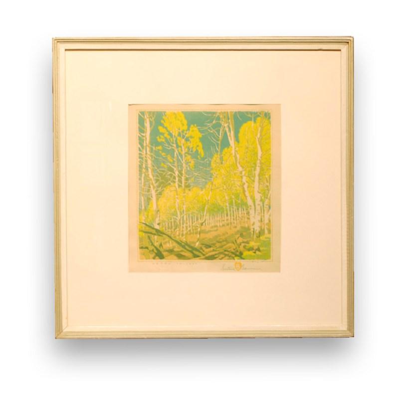 """""""Aspen Thicket"""" Gustave Baumann, (1881-1971)"""