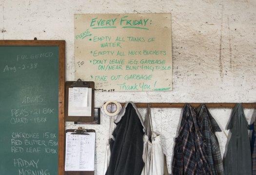 Bialas Farms board | Minimally Invasive