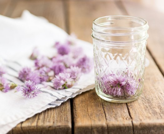 Chive Blossoms, Jar | Amy Roth Photo