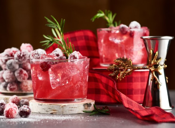 Cranberry Cocktail | Amy Roth Photo