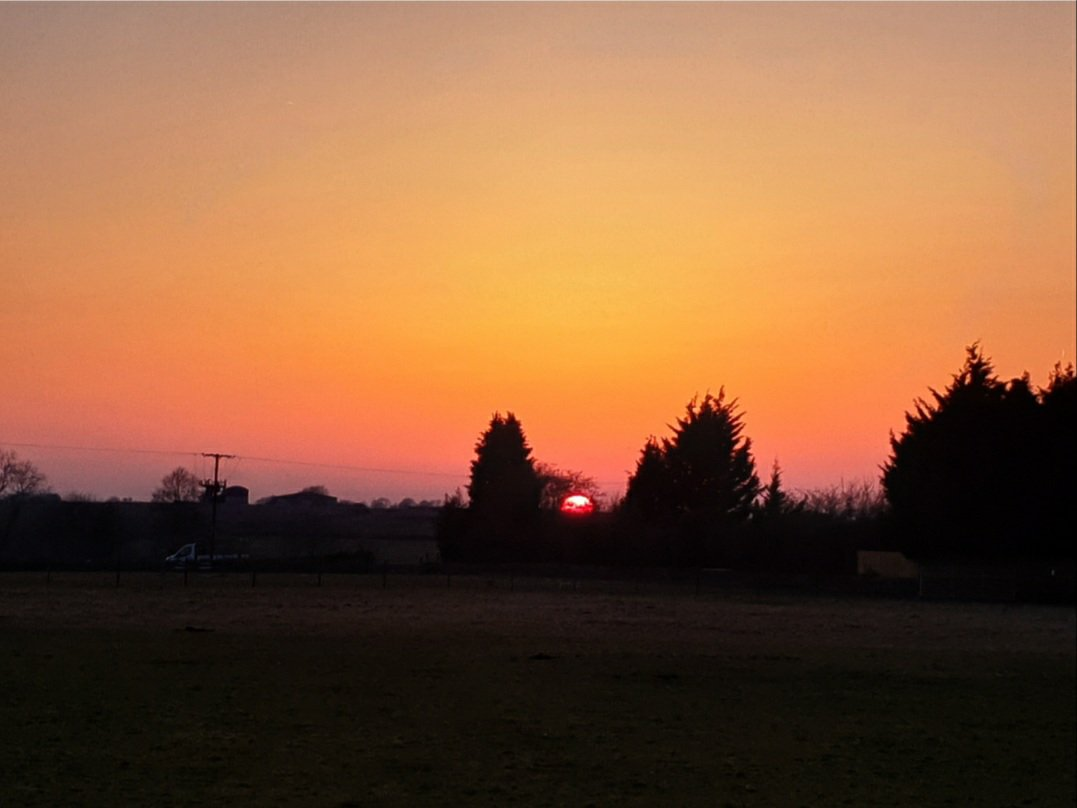 Orange / Yellow sunset over field