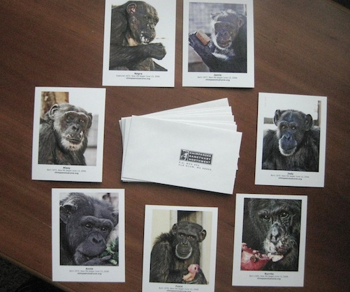 collectible postcards and envelopes