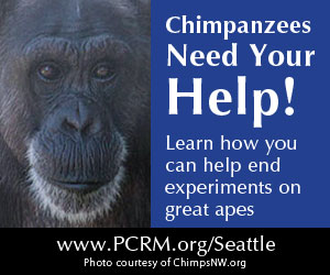 GAPCSA ad for Seattle