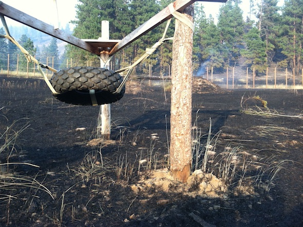 web-black-earth-fire-youngs-hill-tire-IMG_0725