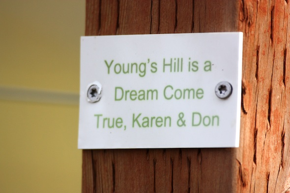web_young's_hill_plaque_second_anniversary_dm_IMG_4728