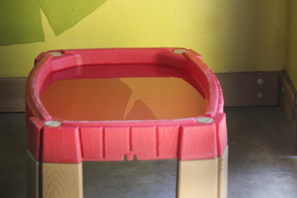 web_water_in_table_enrichment_GH_ls_IMG_1541
